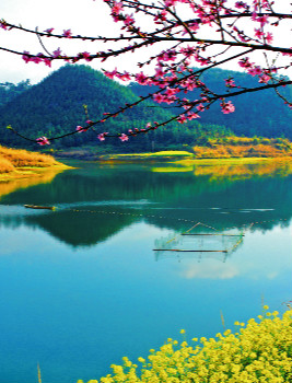 杭州千岛湖滨江希尔顿度假酒店 - 住61赏最中国